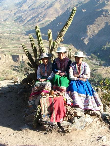 Campesinos andini