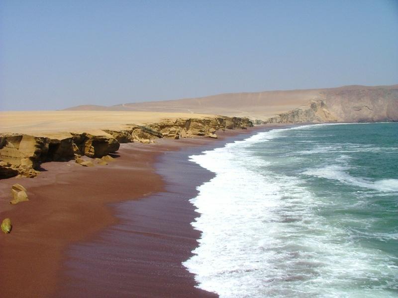Reserva National de Paracas - Perù